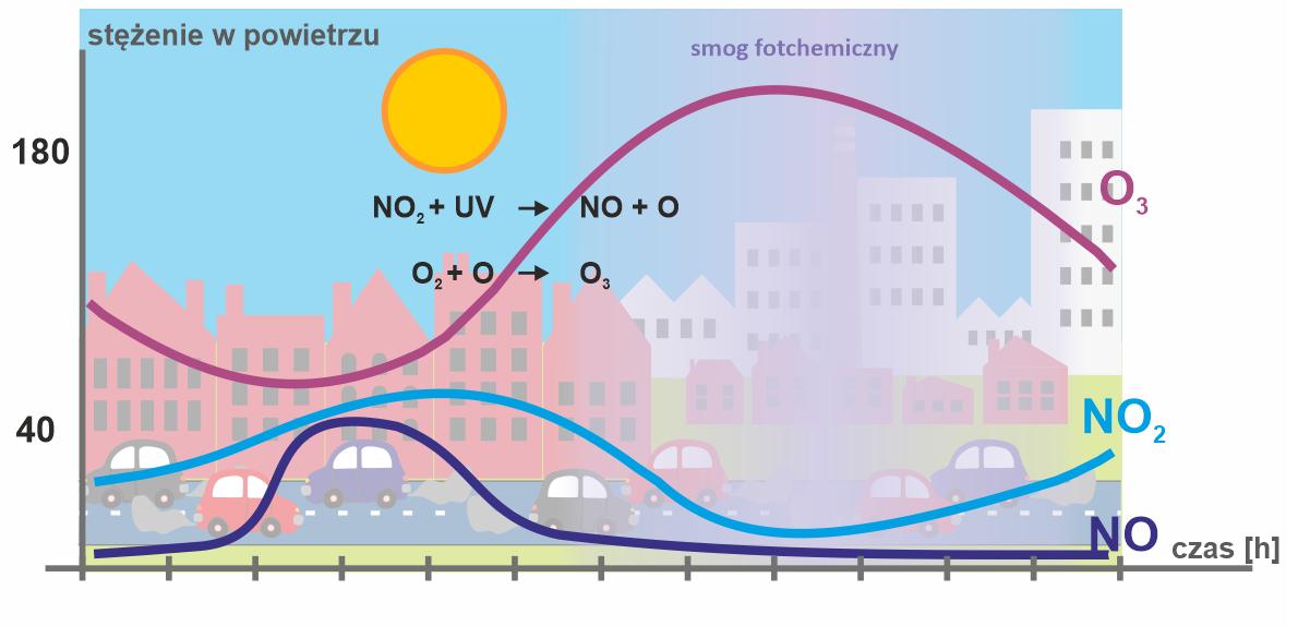 Dobowy przebieg stężenia ozonu i jego prekursorów w słoneczny, letni dzień