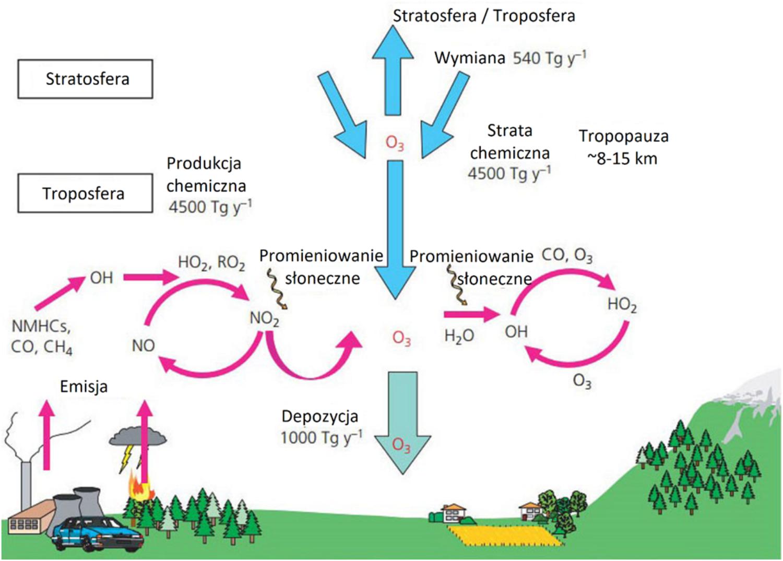 Schemat powstawania ozonu troposferycznego