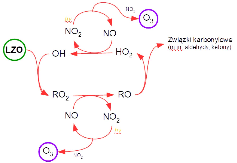 Uproszczony schemat powstawania ozonu w troposferze przy udziale LZO (za Amann i in., 2008)
